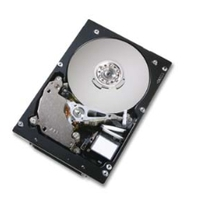 Harddisks - Hitachi 147GB SCSI 10000RPM 8MB 80PIN **Refurbished** - HUS103014FL3800