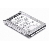 Harddisks - Lenovo 60GB 9.5MM 5400RPM ATA-6 HDD - 73P3357