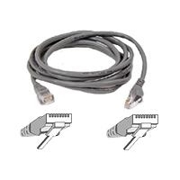 Netwerk kabels - Belkin Cable/patch CAT5 RJ45 snagless 30m grey - A3L791B30M-S